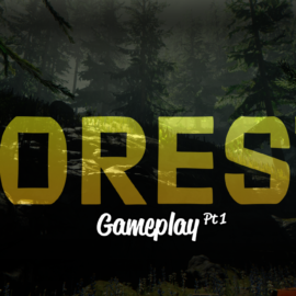 The Forest Playthrough: Part One
